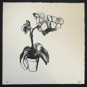 Orchid screenprint
