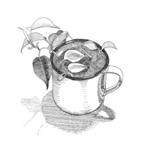 giclee print of ink drawing of a plant in a mug